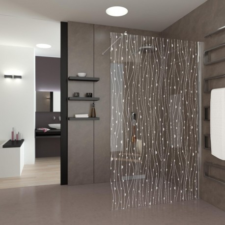 Walk-In Shower Amonia