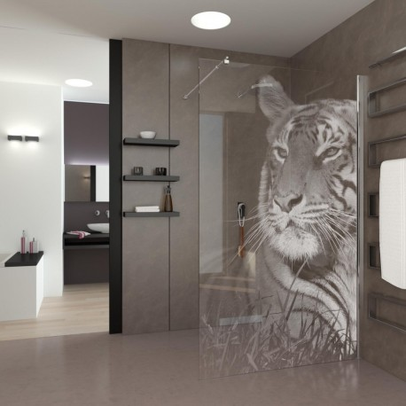 Walk-In Shower Eye of the Tiger